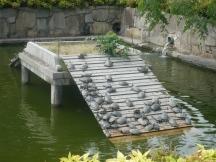 kolam kura-kura di depan kuil